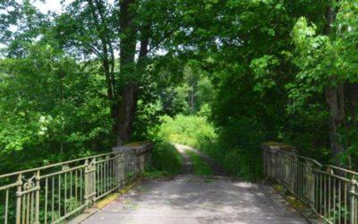 Ecolo Luxembourg s'oppose à la vente du bois des Croisettes à un exploitant privé