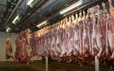 Crise grave pour le consommateur, les travailleurs et l'ensemble de la filière bovine